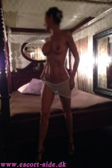 sexdating escort søges